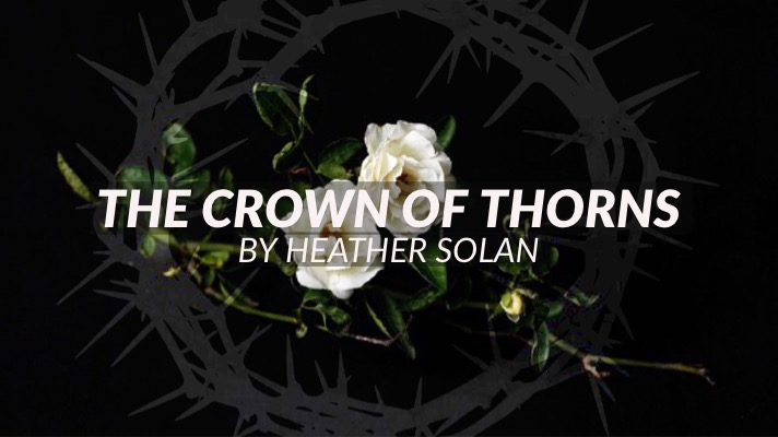 a blog by heather solan